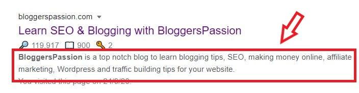 Bloggers Passion